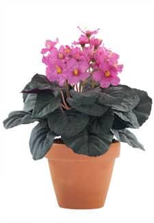 Künstliche Usambaraveilchen Topfblumen rosa 24 cm