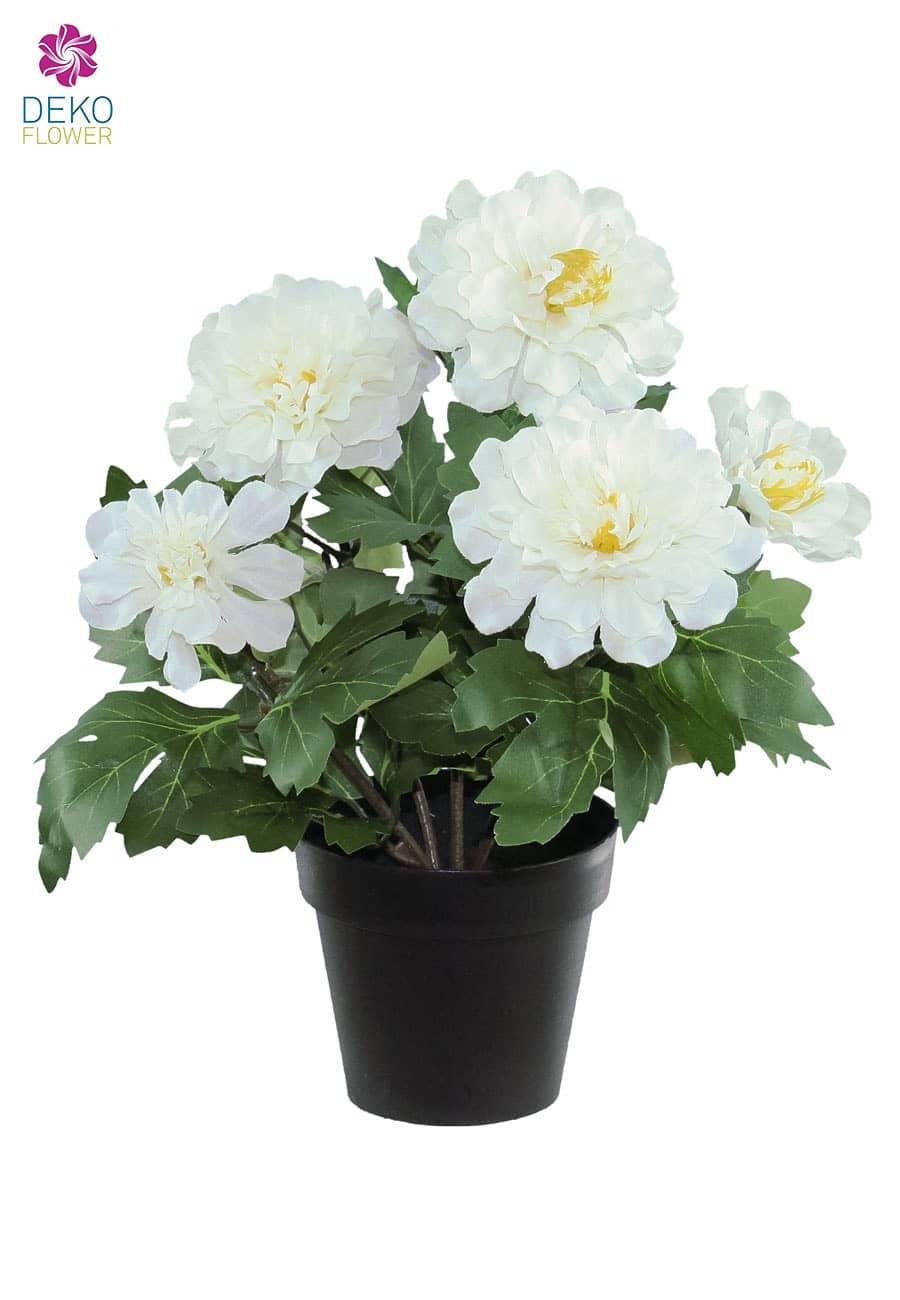 Künstliche Zinnien Topfblumen weiß 29 cm