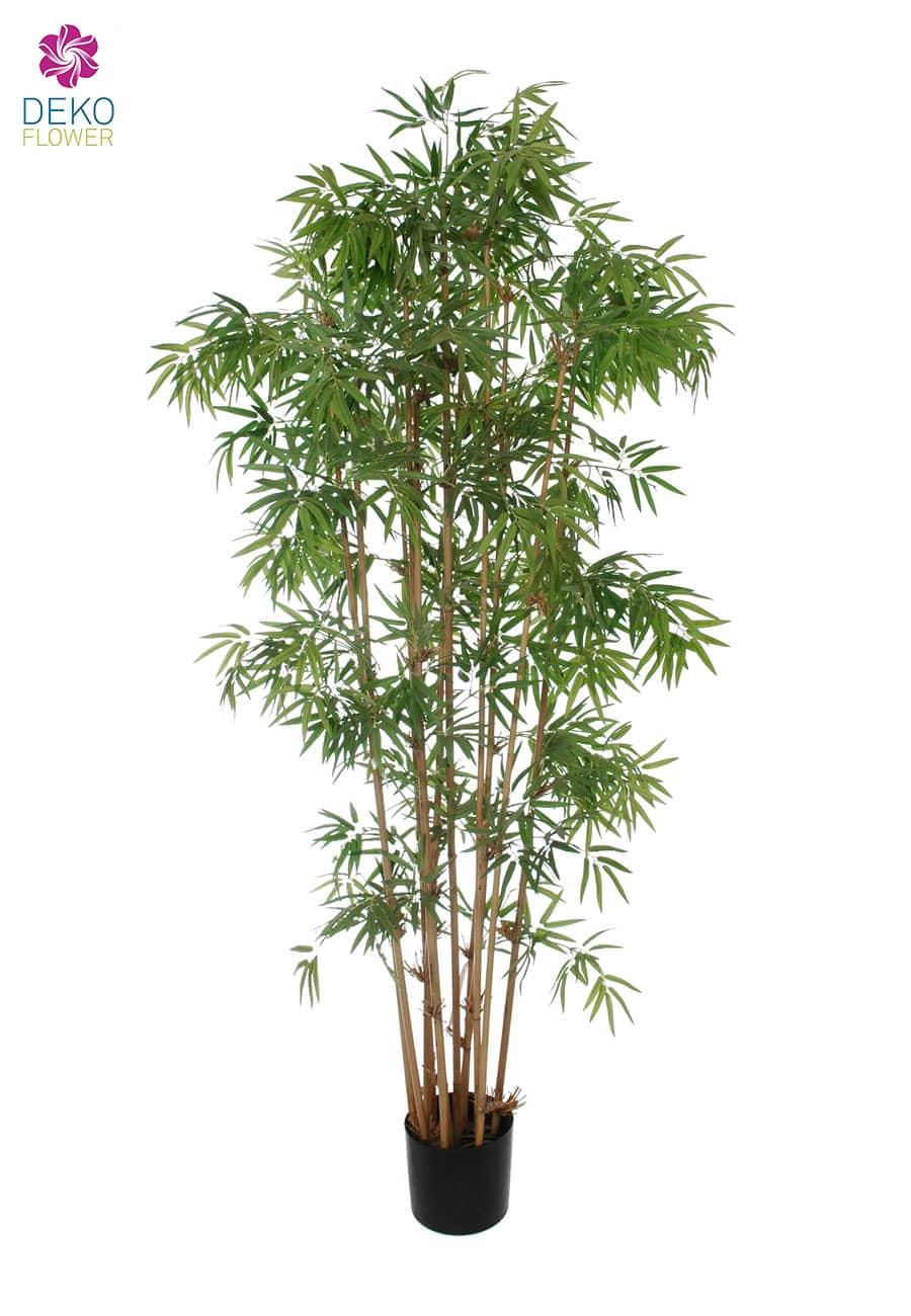 Kunst Bambus Japanese 175 cm