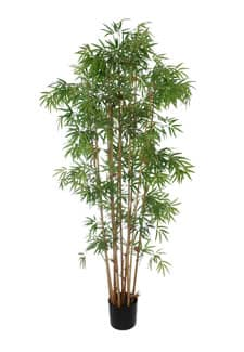 Kunst Bambus Baum Japanese 175 cm