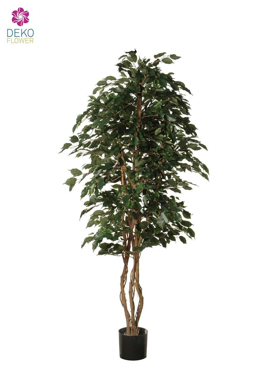 Künstlicher Baum Ficus Exotica grün 180 bis 200 cm
