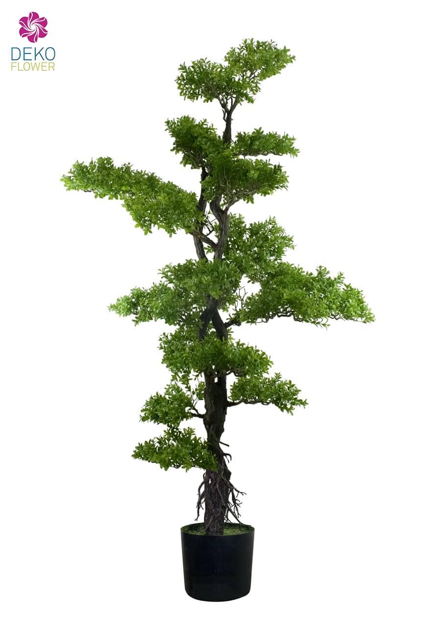 Künstlicher Bonsai Buchs Baum 150 cm