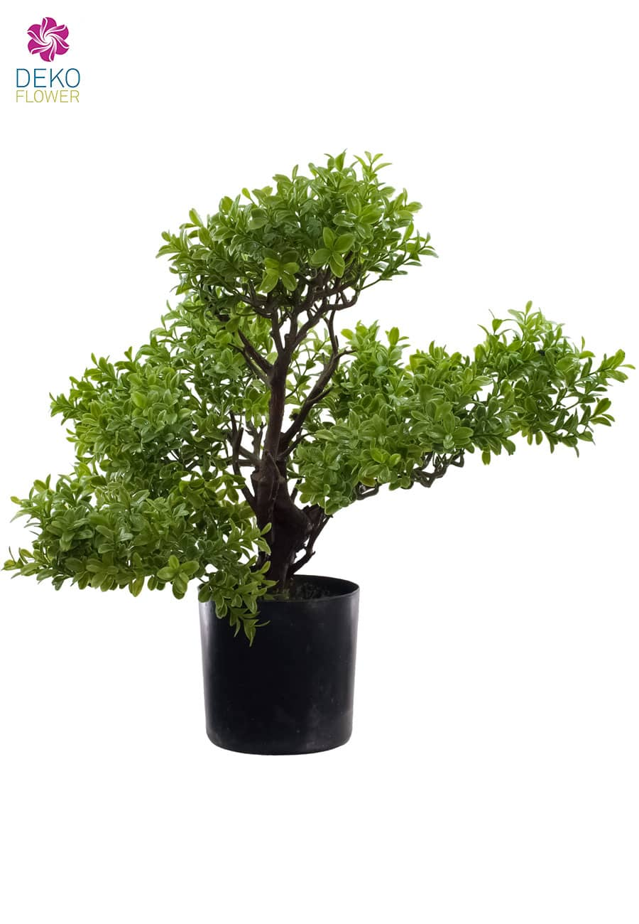 Künstlicher Bonsai Buchsbaum 50 cm