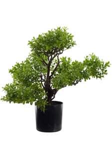 Künstlicher Bonsai Buchs Baum 50 cm
