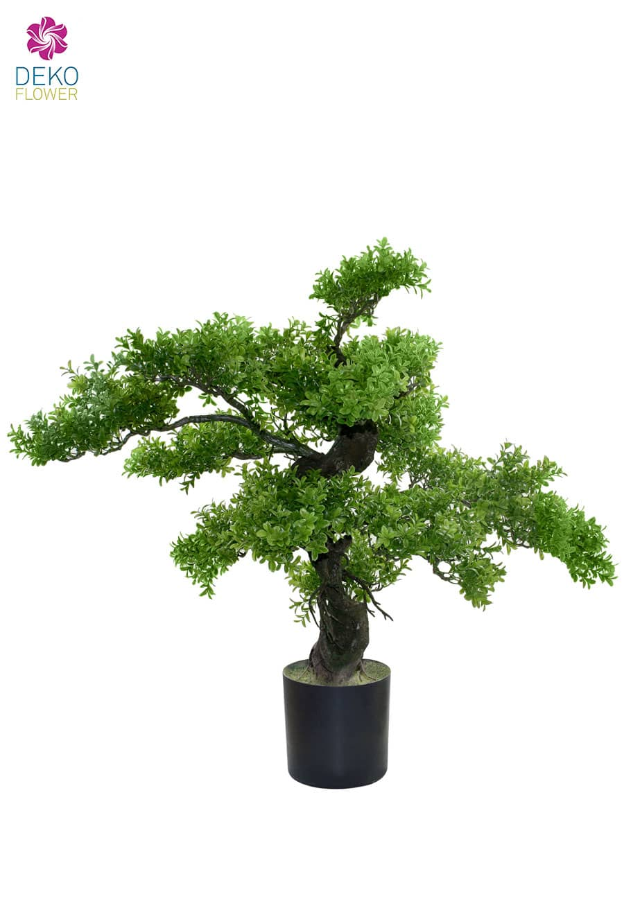 Künstlicher Bonsai Buchs Baum 78 cm