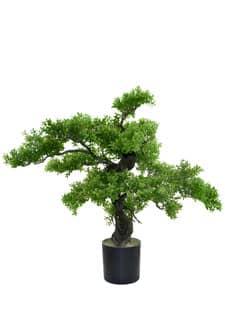 Künstlicher Bonsai Buchsbaum 78 cm