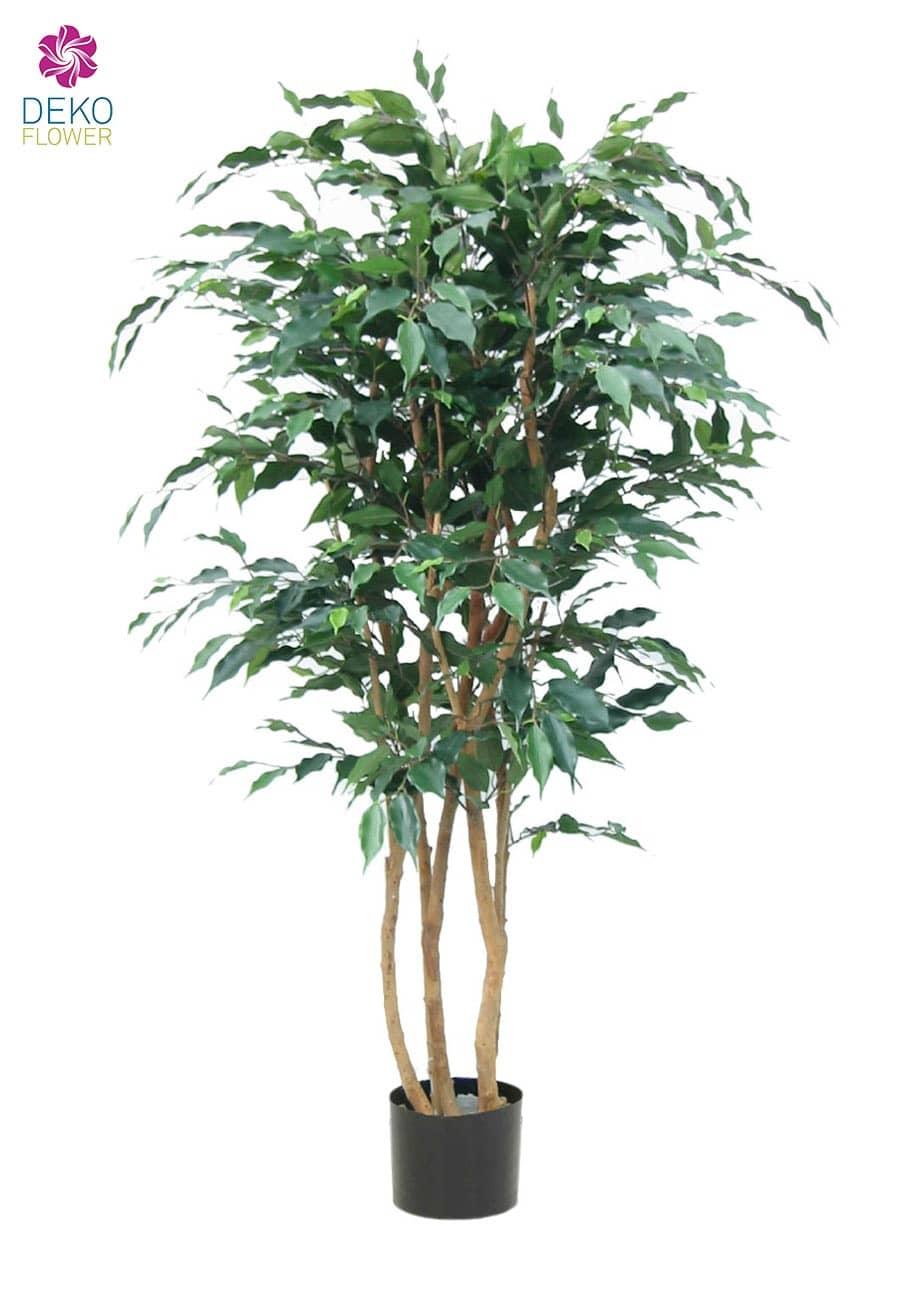 Künstlicher Ficus Baum Deluxe Monique 210 cm