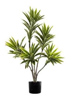 Künstlicher Dracaena Baum 90 cm creme grün