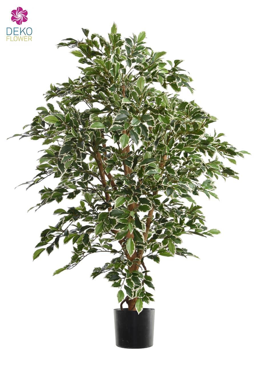 Künstlicher Ficus 140 cm weß grün