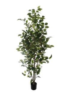 Künstlicher Ficus 155 cm grün