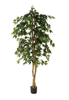 Künstlicher Ficus Baum grün 190 cm