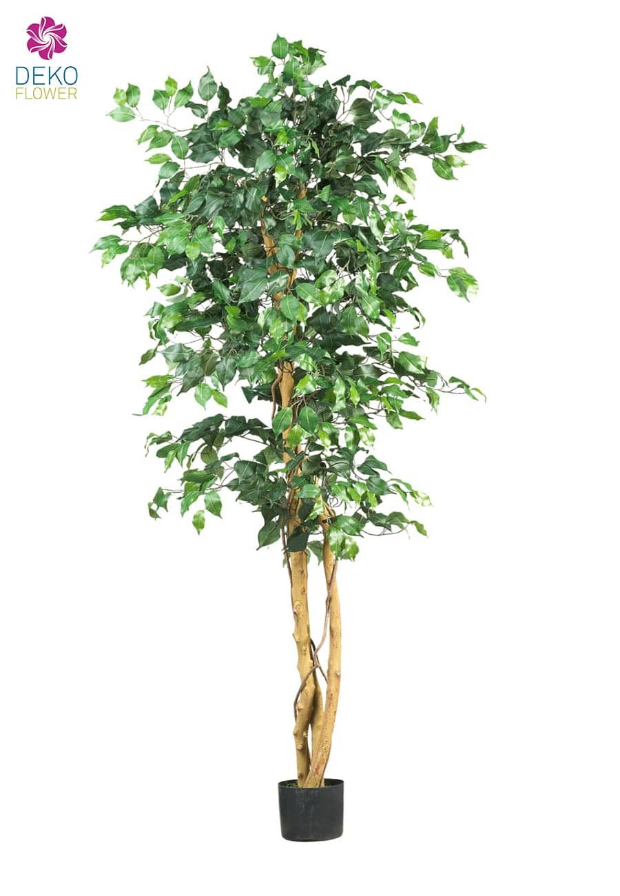 k nstlicher ficus benjamini gr n ca 190cm. Black Bedroom Furniture Sets. Home Design Ideas