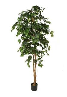 Künstlicher Ficus Benjamini grün 210 cm