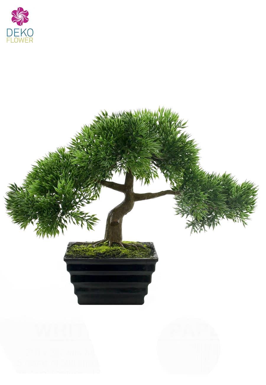 Künstlicher Bonsai »Japanischer Ficus« 23 cm