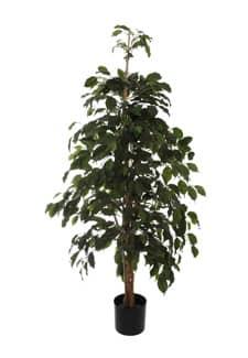 Künstlicher Ficus Exotica grün 150 cm
