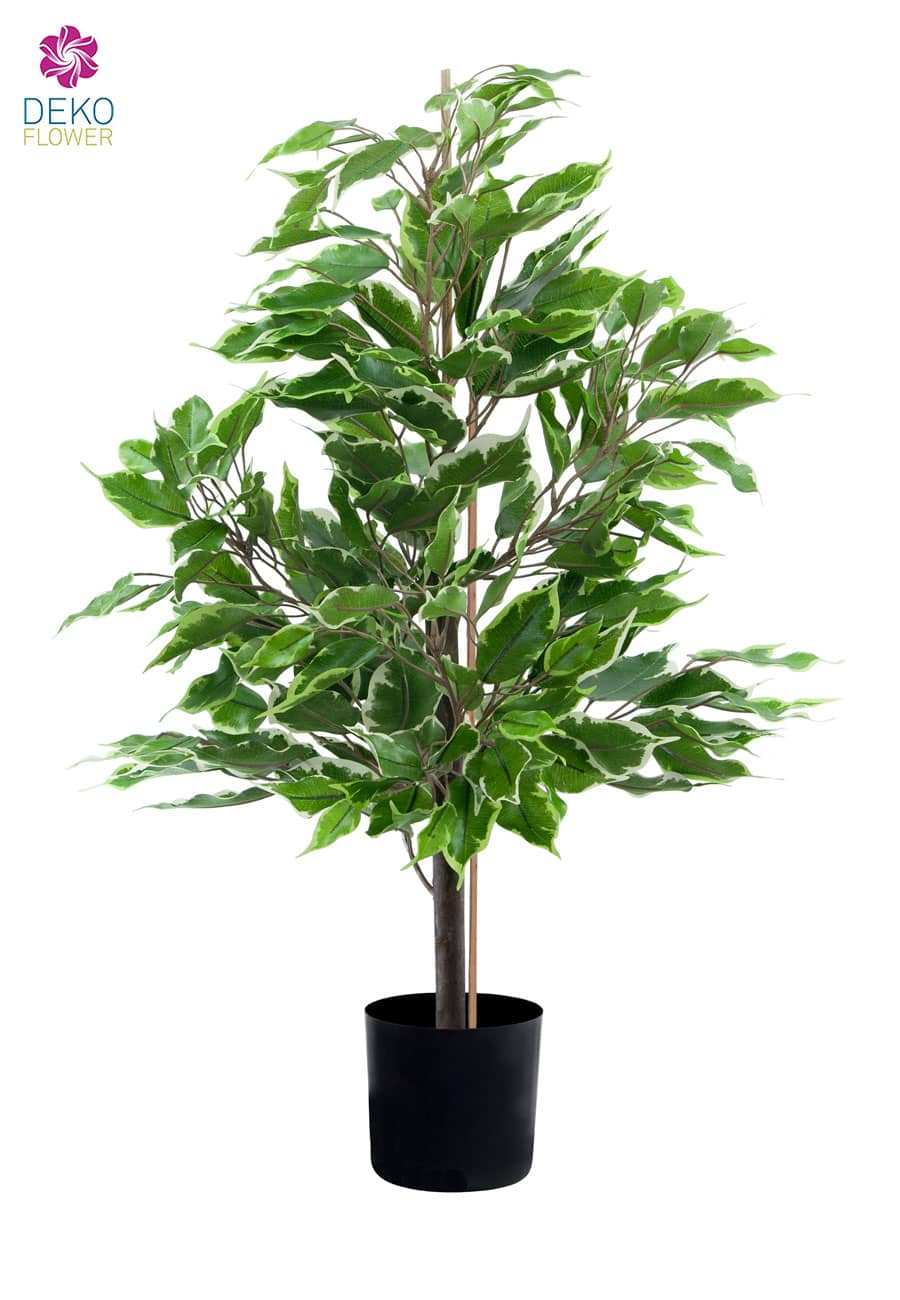 ficus benjamini kunstpflanze 65 cm gr n creme. Black Bedroom Furniture Sets. Home Design Ideas