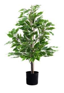 Ficus Benjamini Kunstpflanze 65cm grün-gold