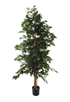 Künstlicher Ficus grün 220 cm