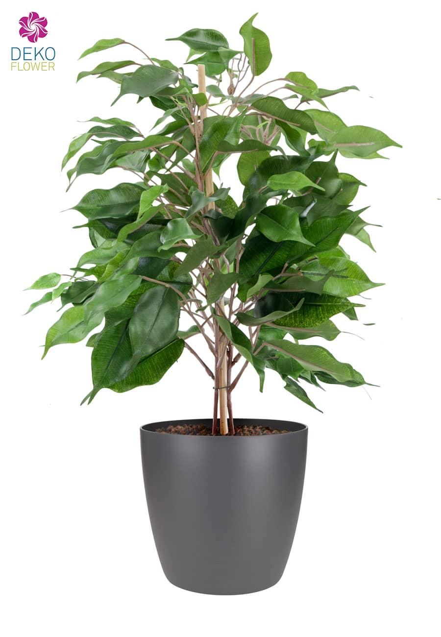 Künstliche Ficus Grünpflanze 42 cm