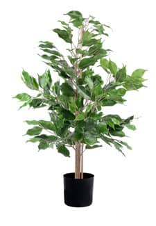 Ficus Benjamini Kunstpflanze 65cm grün