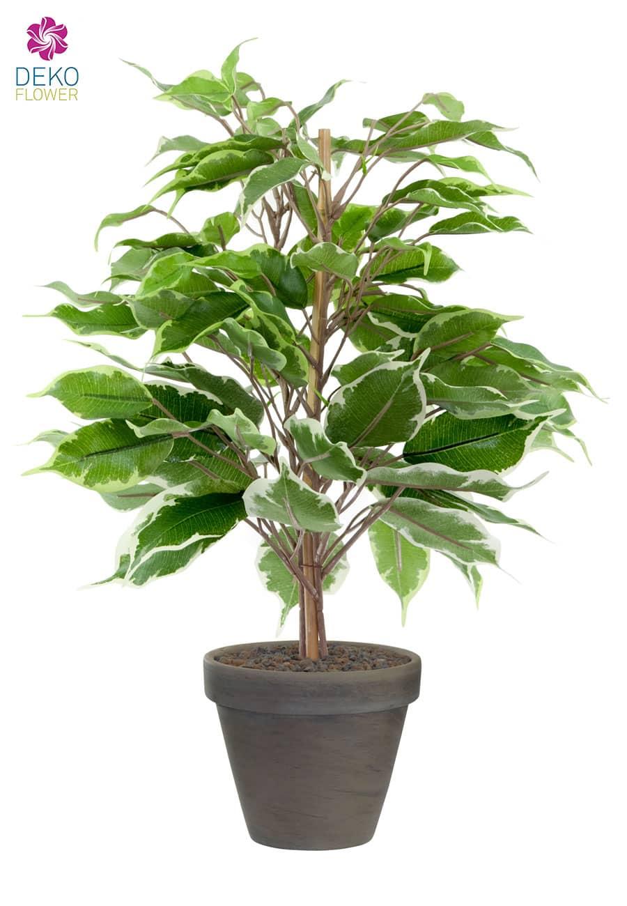 Ficus Benjamini Kunstpflanze 40 cm grün creme