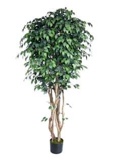 Künstlicher Ficus Baum New York 210 cm