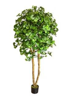 Künstlicher Deluxe Ginkgo Baum 210 cm