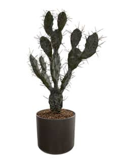 Künstlicher Kaktus im Topf 64 cm