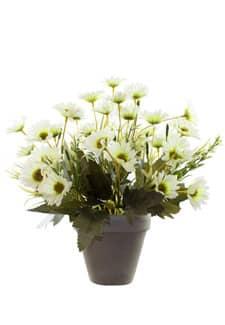 Künstlicher Margeritenbusch cremegrün 30 cm