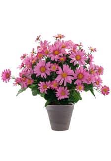 Künstliche Margeriten Topfblumen pink 43 cm