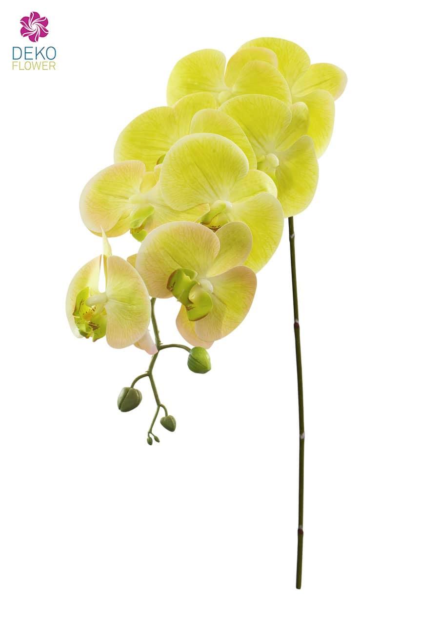 Künstlicher Orchideenzweig 103 cm grün