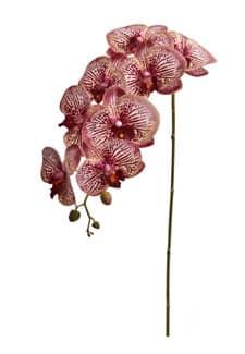 Künstlicher Orchideenzweig weinrot 103 cm