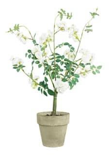 Strauch künstlicher Wildrosen im Topf creme 60cm
