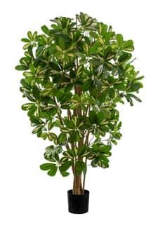 Künstlicher Schefflera Baum 110 cm
