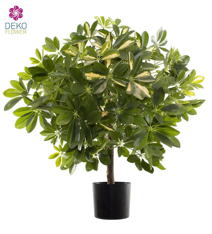 Künstlicher Schefflera Baum 85 cm