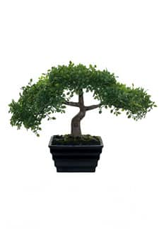 Künstlicher Teeblatt Bonsai Baum 23 cm