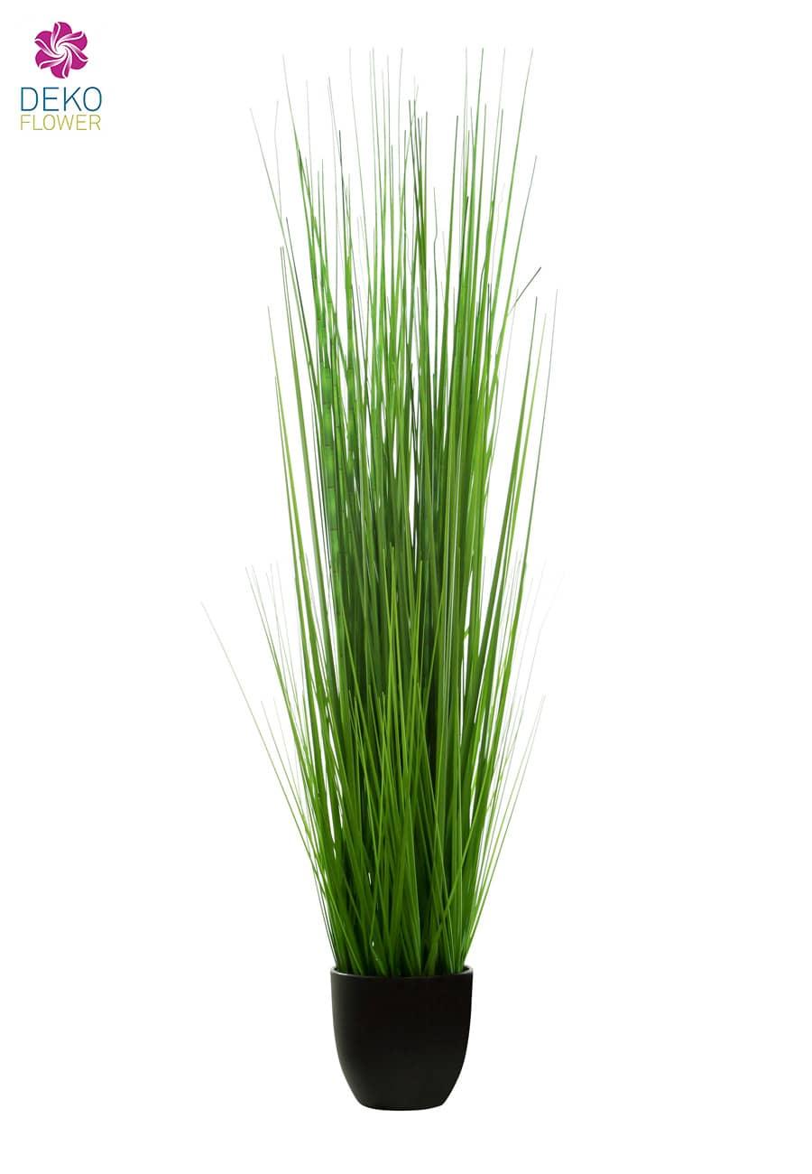 Künstliches Mississippi Gras im Topf 140 cm grün