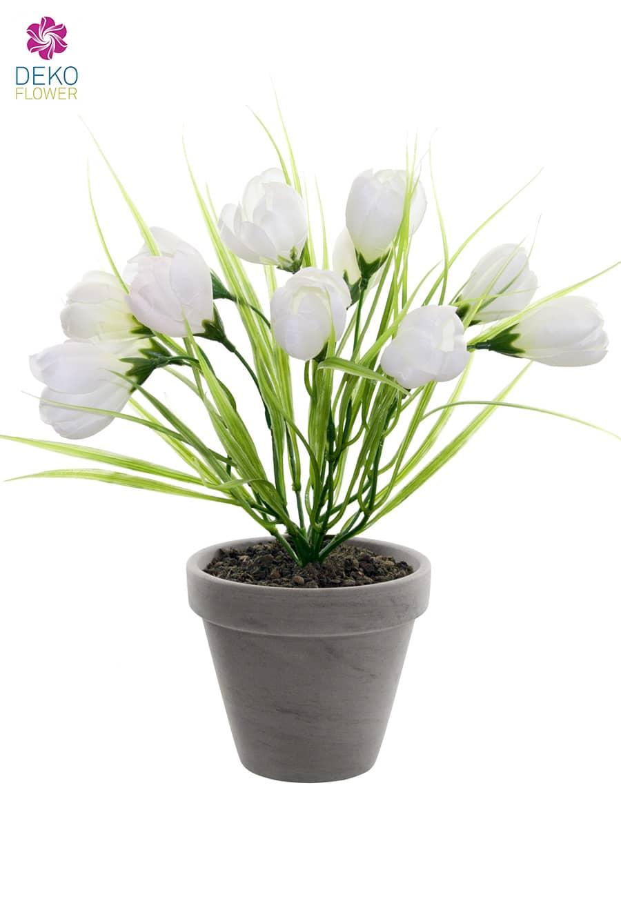 Krokus Kunstpflanze im Topf creme-weiß 29cm