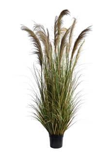 Künstliches Pampasgras mit 17 Wedeln 200 cm