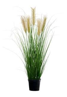Künstliches Pampasgras grün 110 cm