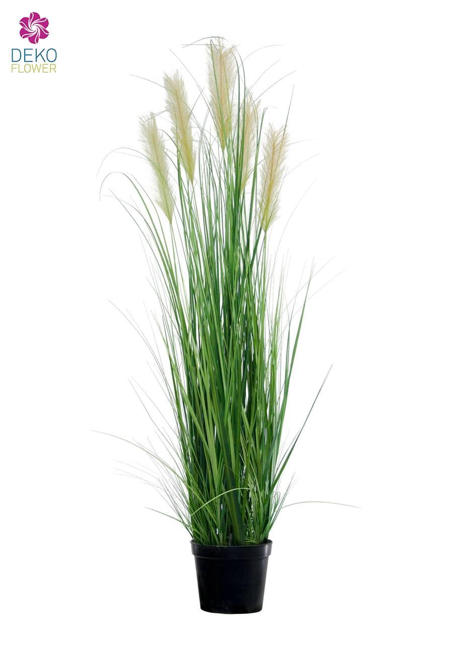 Künstliches Pampasgras grün 143 cm