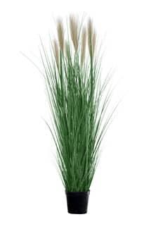 Künstliches Pampasgras grün 170 cm