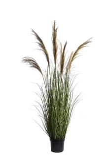 Künstliches Pampasgras grün mit 7 Wedeln 170 cm