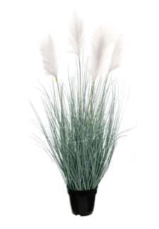 Künstliches Pampasgras weiße Wedel 114 cm