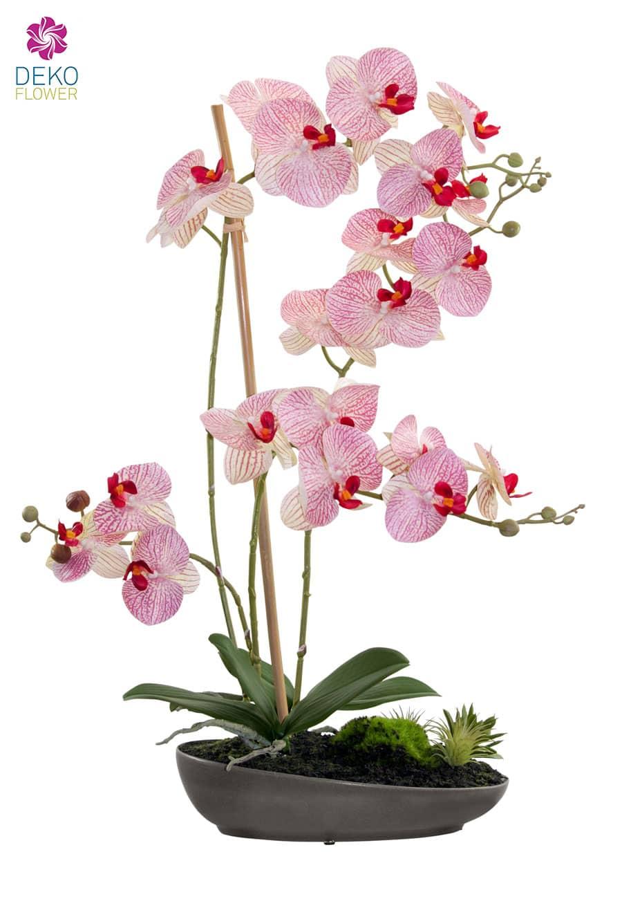 Kunst Orchideen Gesteck rot grün in Schale 65 cm