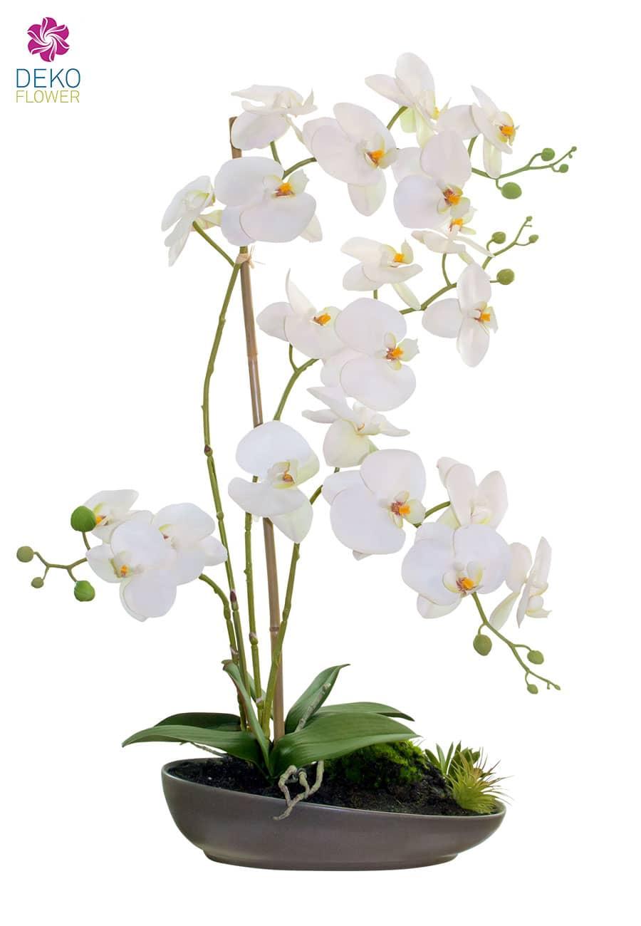 Kunst Orchideen Gesteck weiß in Schale 65 cm