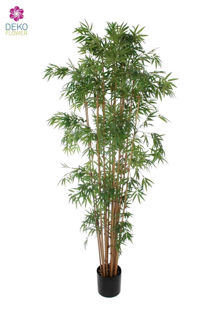 Kunstbaum Bambus »Japanese« 205 cm