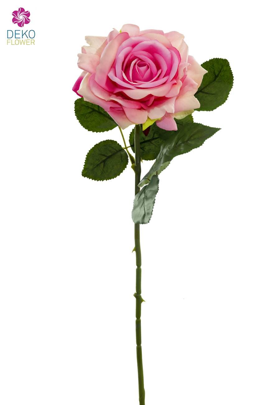Seidenrosen rosa 75 cm 6er Pack