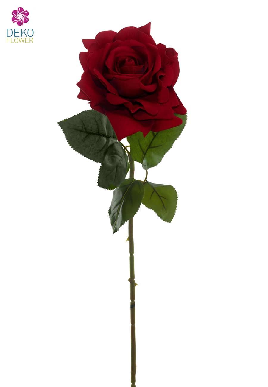 Seidenrosen rot 75 cm 6er Pack