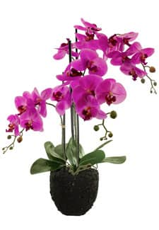 Kunstorchidee pink 74 cm mit Kunsterde